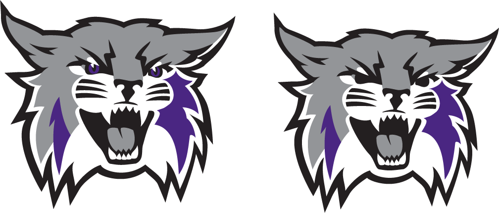 Interview With Weber State Id Designer Hillary Wallace Sportslogos Net News
