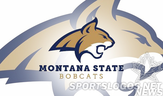 featured  - Montana State bobcats